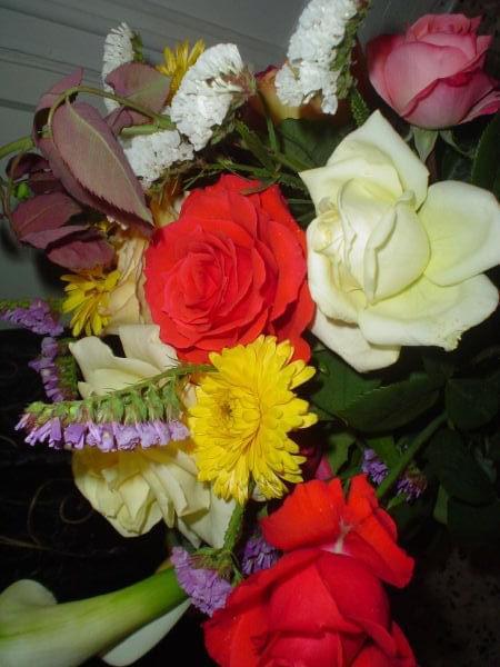 #kwiaty #kolor #kompozycja