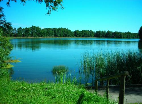 Jezioro Borzechowskie Wielkie #Pejzaż