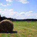 sianokosy na nadwarciańskich łąkach #krajobraz #widok #rolnictwo #sianokosy