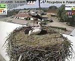 http://images40.fotosik.pl/157/bb8bd2e8d310ea9am.jpg