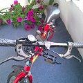 #rower #sprzedaż #allegro #forester #górski #zabawa #dziecięcy #las #przejażdżki #jazda #przeżutki #shimano #rolki #samochody #motory #zwierzęta #przyroda #zdrowie