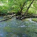 bystrze jakubkowo #wel #kajaki #bystrze #jakubkowo #spływ