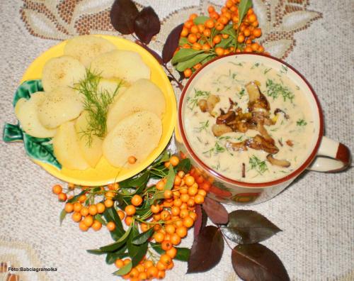 Jesienna borowikowa. Przepisy do zdjęć zawartych w albumie można odszukać na forum GarKulinar . Tu jest link http://garkulinar.jun.pl/index.php Zapraszam. #zupy #borowiki #grzyby #borowikowa #jedzenie #kulinaria #gotowanie #PrzepisyKulinarne