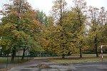 http://images40.fotosik.pl/211/6971acd7b4d86f13m.jpg