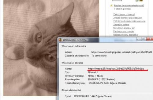 http://images40.fotosik.pl/22/0e48e610c2a26c04med.jpg