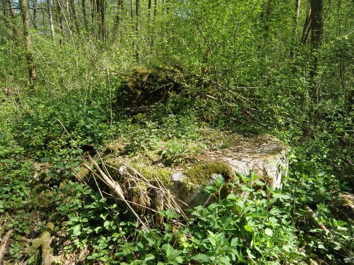 Ruiny młyna papierniczego w Rosiejewie- Papier und Zelullosenfabrik  Pulverkrug Fb3a4f7b399eef79