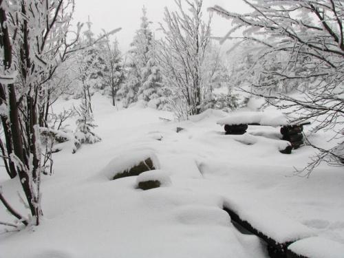 Pod Kukułczymi Skałami #Karkonosze #góry #zima #śnieg #KukułczeSkały
