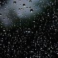 zabawa deszczem... #deszcz #natura #szyba