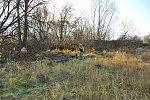 http://images40.fotosik.pl/30/65380a414c45c84bm.jpg