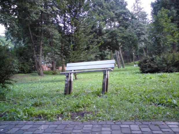Ławka dla bardzo wysokich spacerowiczów? Park Miejski w TM. #ławka #park #TomaszówMazowiecki