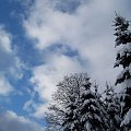 Troszkę błękitu :) #zima #błękit #niebo #snieg