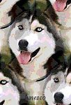 http://images40.fotosik.pl/562/0c79563021326436m.jpeg