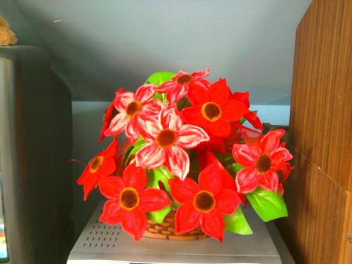 szydełko,robótki ręczne,kwiatki szydełkowe #szydełko #rękodzielnictwo #KwiatySzydełkowe